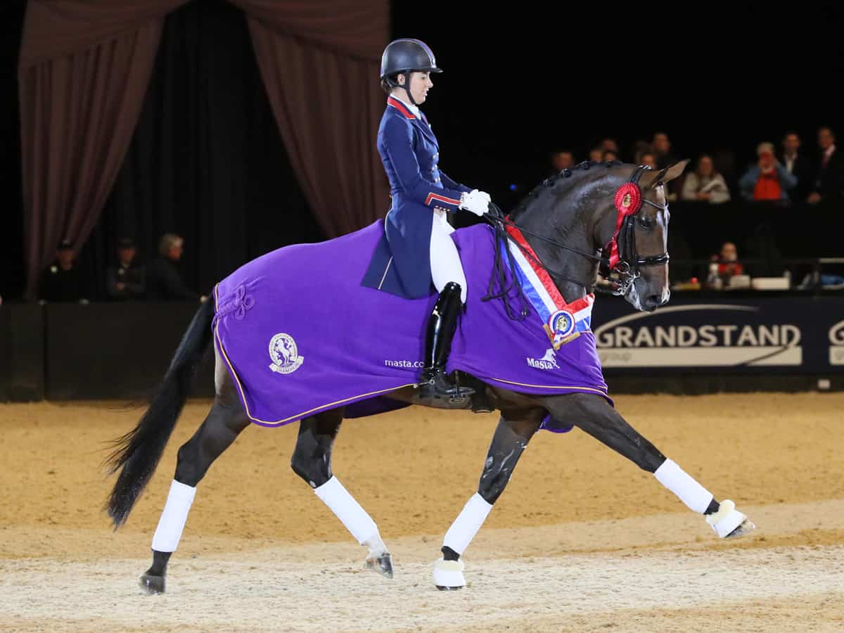 Trade Stands Hoys 2015 : 2018 september the horse of the year show